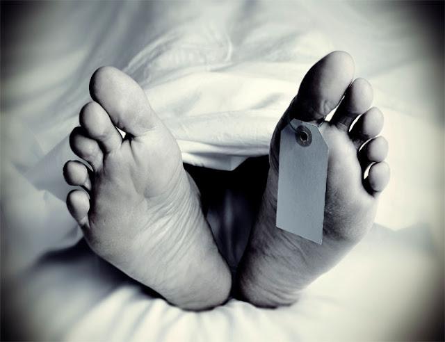 कांगड़ा: घर के आंगन में बैठे बुजुर्ग पर सांड ने किया हमला, अस्पताल में उपचार के दौरान तोड़ा दम
