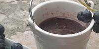 Brački afrodizijak - Varenik recepti slike otok Brač Online