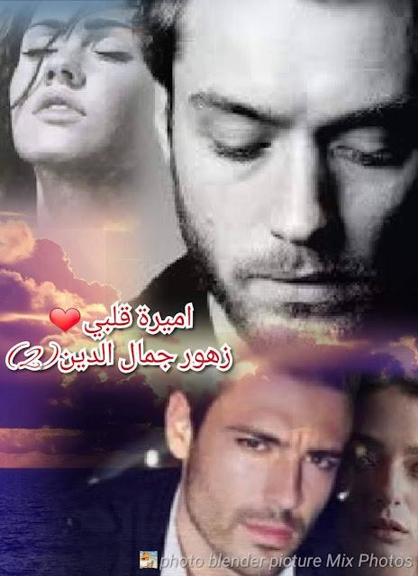 رواية أميرة قلبي الحلقة الثانية - زهور جمال الدين