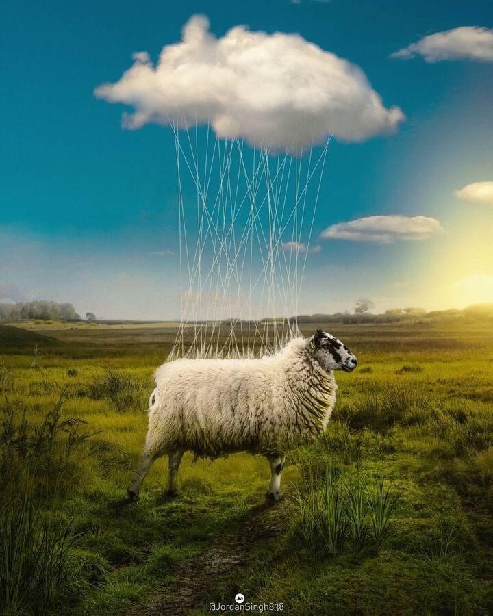 09-Birth-of-a-cloud-Jordan-Singh-www-designstack-co