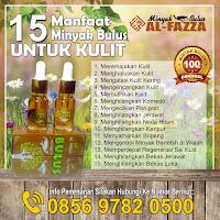 15-manfaat-minyak-bulus-bagi-kulit