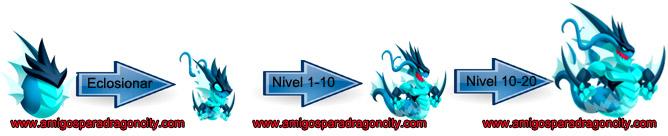 imagen de los niveles de crecimiento del noble dragon marea
