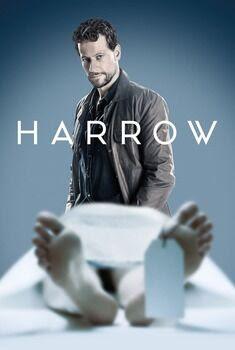 Harrow 1ª Temporada Torrent - WEB-DL 720p Dual Áudio