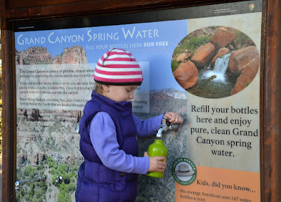 refill water stations to reduce single use water bottles