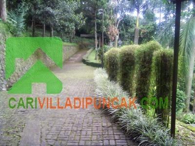 Jalan Masuk Villa 0040