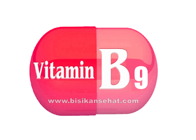 Manfaat Vitamin B9