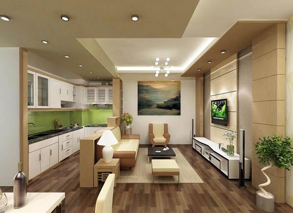 Kết hợp không gian phòng khách và nhà bếp