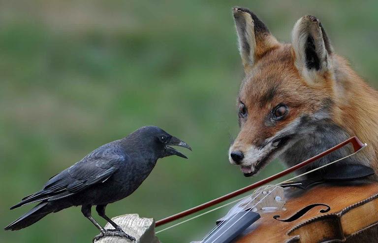 """A raposa ao corvo: """"eu me sentiria muito ditosa ouvindo o vosso canto"""""""