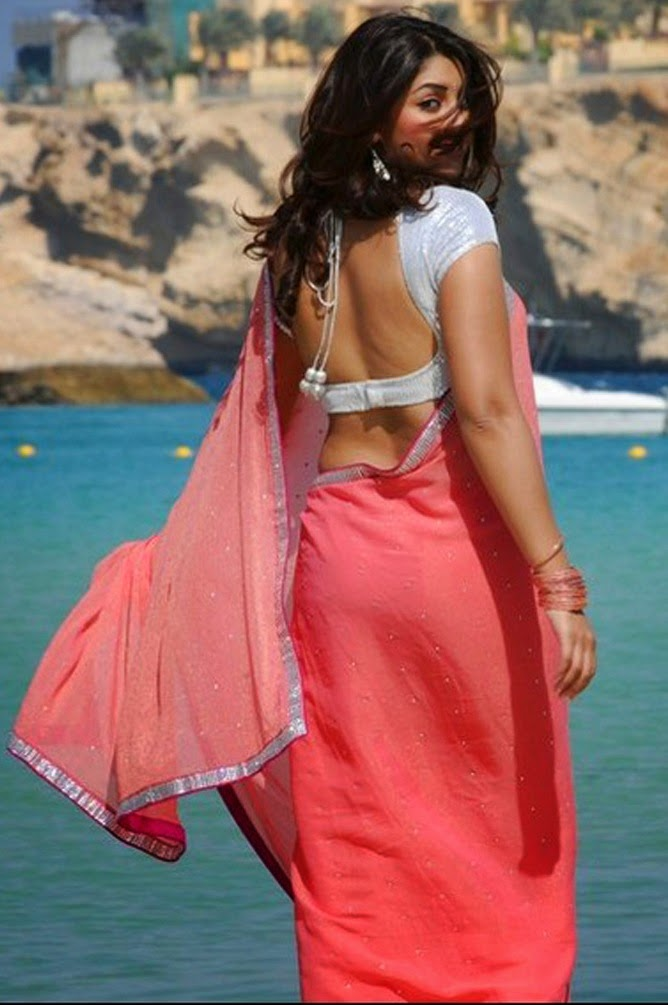 actress in saree back view photos