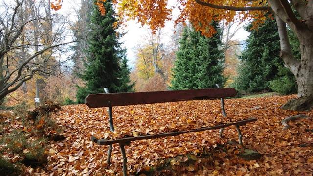 Parco Burcina FOLIAGE