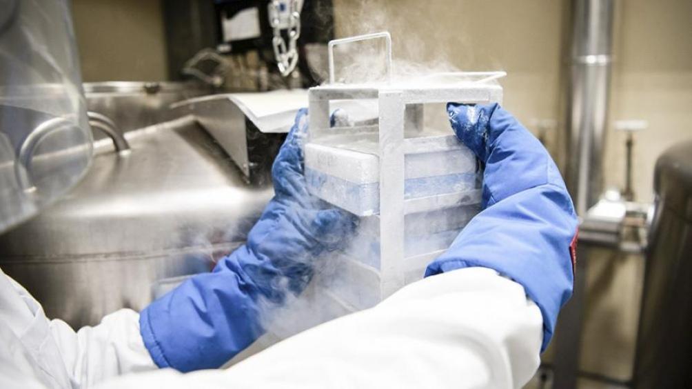 Estados Unidos: Descubren que casi la mitad de los contagios de coronavirus pueden ser asintomáticos