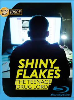 Shiny_Flakes: El cibernarco adolescente (2021) HD [1080p] Latino [GoogleDrive] PGD