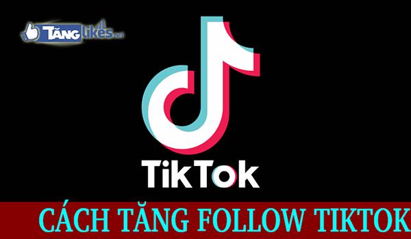 tang luot theo doi
