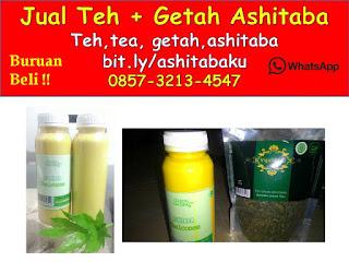 0857-3213-4547 Jual Getah Ashitaba Malang