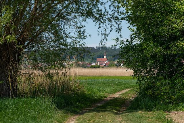 Premiumwanderweg DonAUwald  Etappe 5 von Höchstädt nach Schwenningen 15