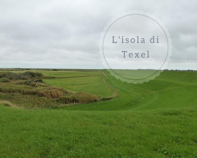 Isola di Texel: cosa vedere girando in bici
