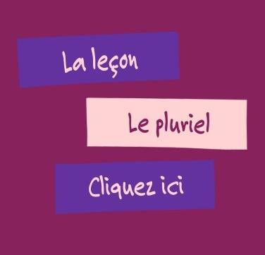 http://www.linstit.com/lecon-francais-orthographe-pluriel-noms.html