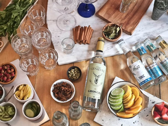 tonic,eau-onique,tonic-1642,comment-choisir,maitre-gin-tonic,madame-gin,diy