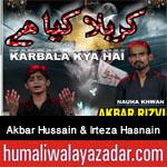 http://www.humaliwalayazadar.com/2016/10/akbar-hussain-rizvi-irteza-hasnain.html