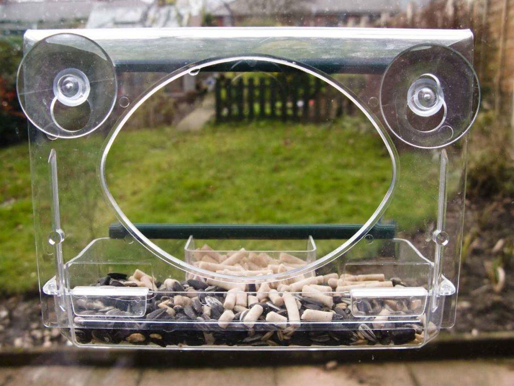 6 Best Window Bird Feeders for Bird Lovers