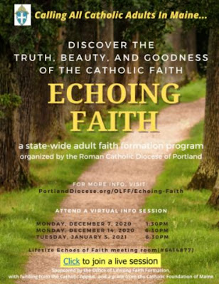Echoing Faith ~ Adult Faith Formation Program