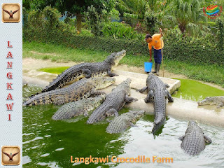 Crocodile Adventureland Langkawi, Malaysia