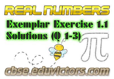 CBSE Class 10 - Maths - Real Numbers (NCERT Exemplar Solutions Ex 1.1 Q1-3) (#cbsenotes)(#eduvictors)