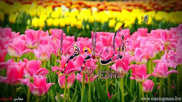 معنى اسم فدك الزهراء وصفات حاملة هذا الاسم Fdk Zahraa