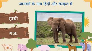 Elephant name in sanskrit and hindi with images