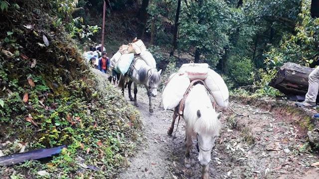 MARG and GNLF visit Gorkhay and Samanden