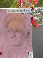 http://www.rowohlt.de/taschenbuch/martin-geck-ludwig-van-beethoven.html