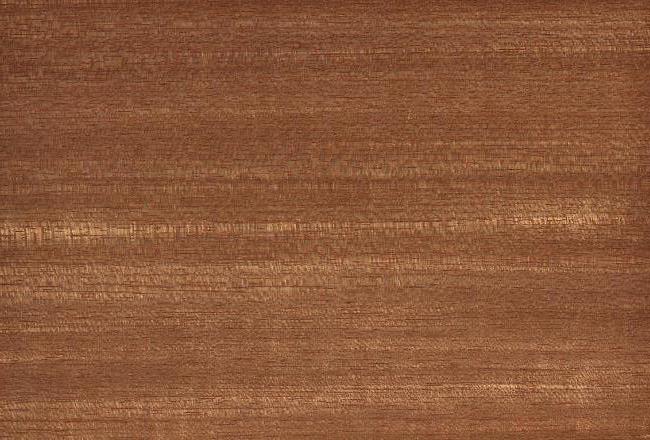 Επισκευή και συντήρηση σε παλιό ξύλινο πάτωμα με ματ βερνίκι