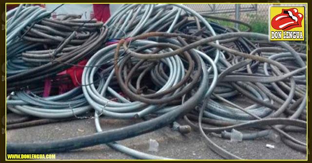 Estudiantes de la UCV sorprendieron a un par de ladrones de cables y les dieron hasta con el tobo