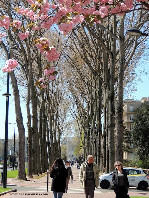 Primavera e Equinócio