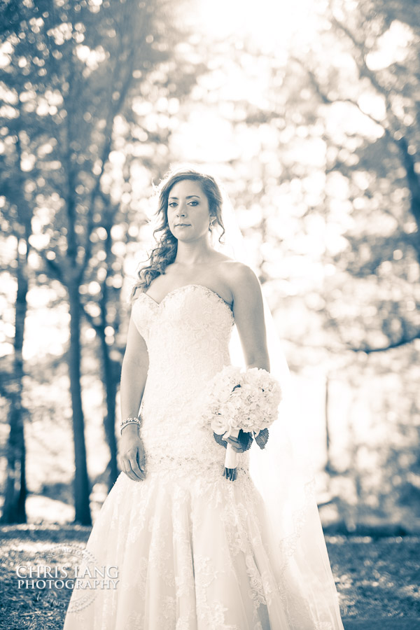Image of bridal portrait at River Landing, Wallace NC