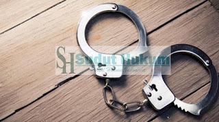 Tindak Pidana Korupsi Tindak Murni