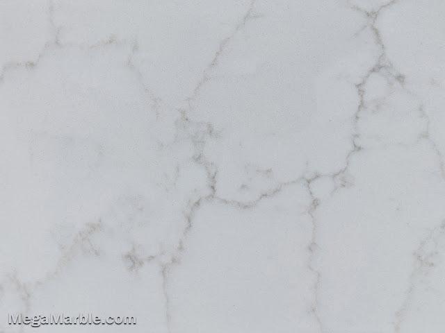 Bianco Venatino Quartz Stone Color