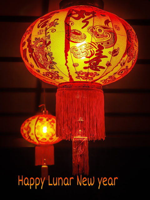 Lunar New Year Red  Lantern