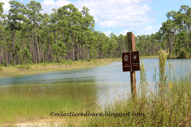 Eclectic Red Barn: Everglades National Park with signs