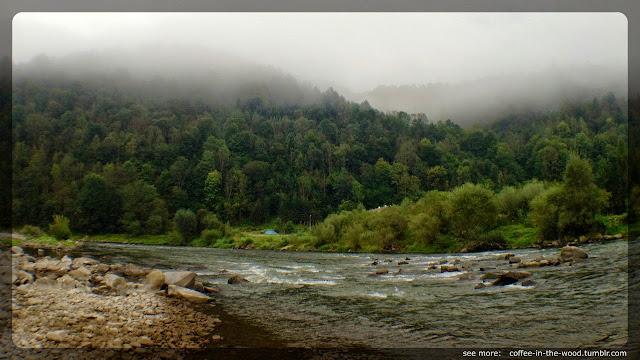 rzeka, las, mgła, dunajec