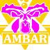 La Asociación  civil Ámbar realizara varios cursos dirigido  a mujeres y adolescentes