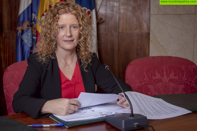 El proyecto de formación y empleo 'La Palma SI III' concluye con destacados logros para sus jóvenes participantes