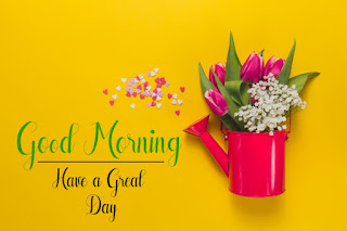 Good Morning Royal Images Download for Whatsapp Facebook69