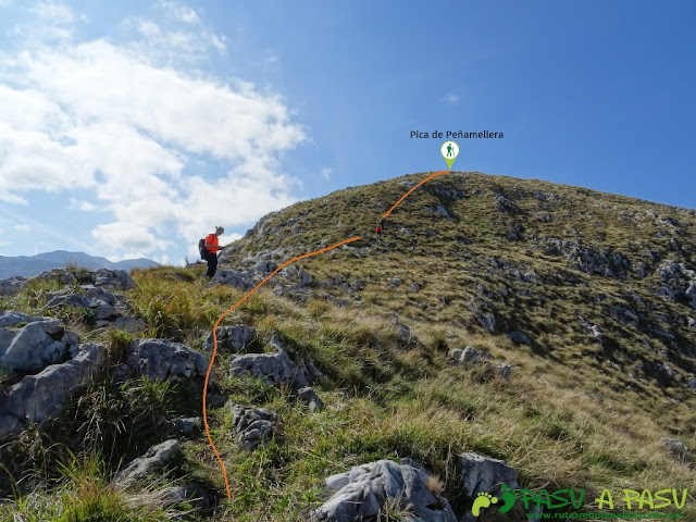 Ruta a la Pica de Peñamellera: Amplia pradera en la cima