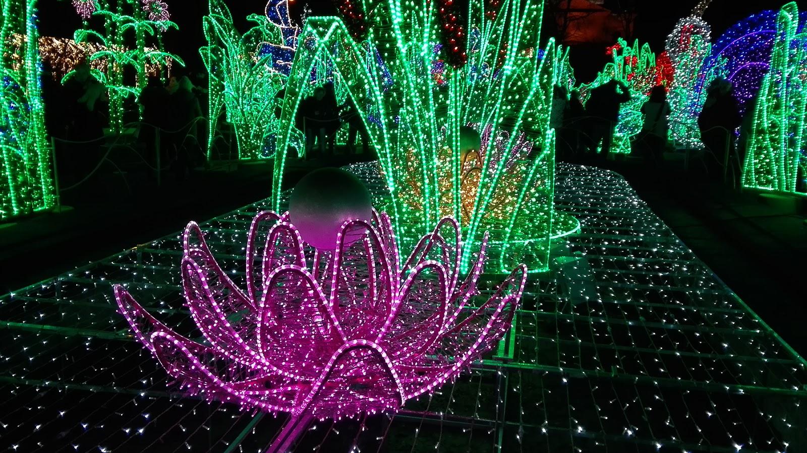 Odslonkulturepl Królewski Ogród światła W Wilanowie