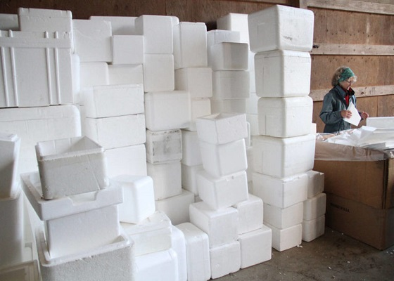 foam recycling: Styrofoam is a valuable resource that can be