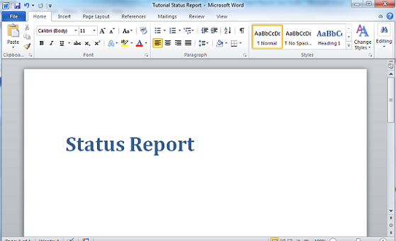Doc758491 Reporting Template Word Report Templates Word 91 – Reporting Template Word
