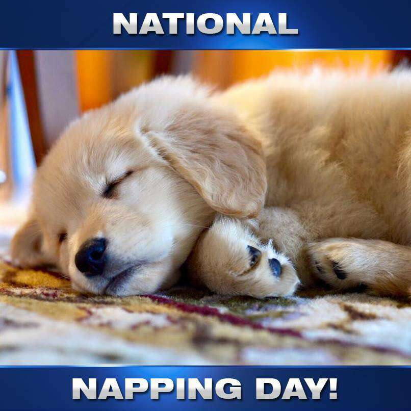 National Napping Day Wishes Pics