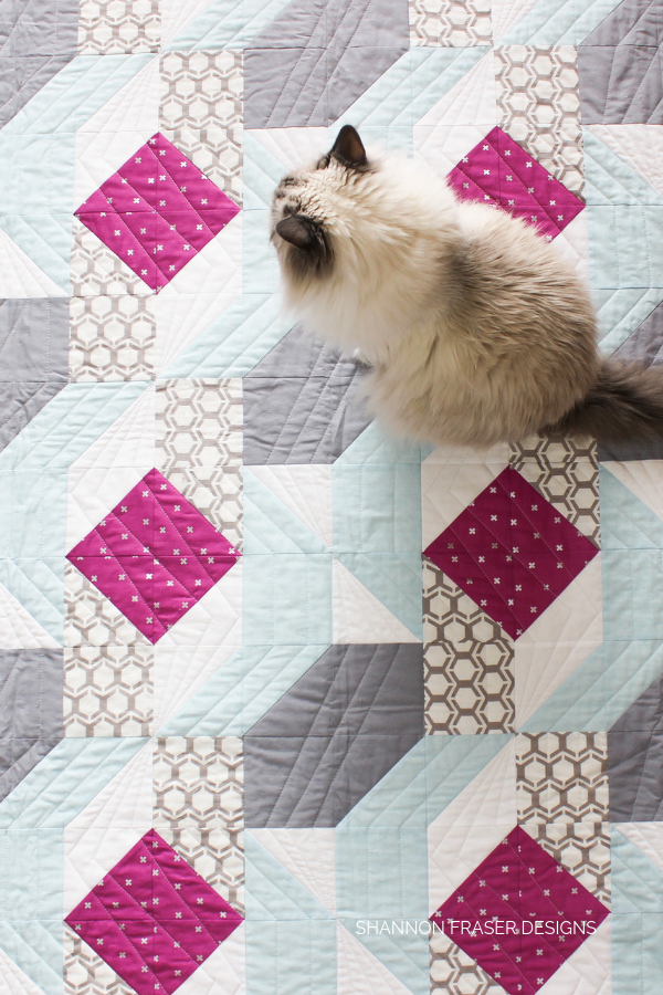 Pips on quilts | Rocksteady | Modern quilt pattern by Suzy Quilts | Shannon Fraser Designs #cats #catsonquilts