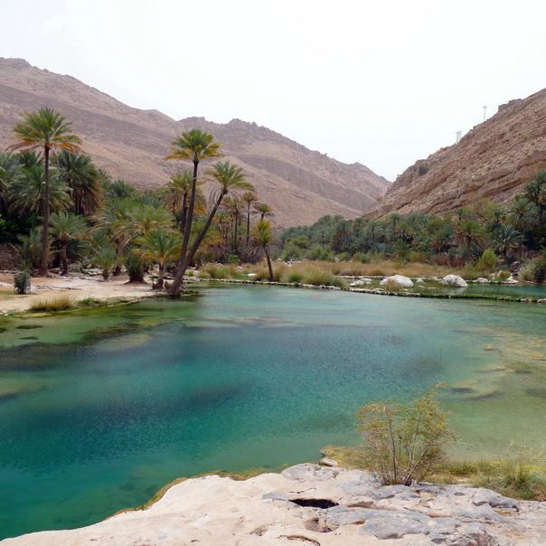 Wadi Bani Khalid, Oman, Wasser, Pool, Palmen, Oase, Berge
